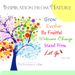 Inspirational Quote: From Nature