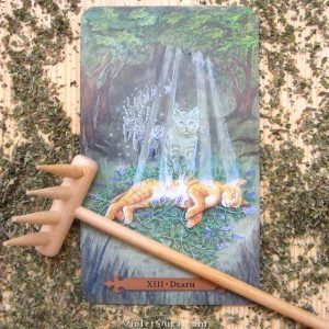 Tarot Death Card - Mystical Cats Tarot